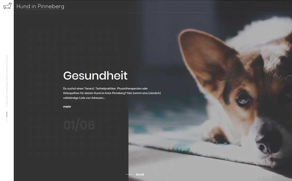 Hund in Pinneberg